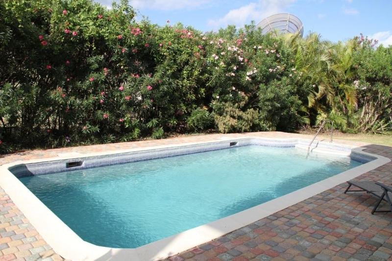 Much foliage surrounds our big  pool.