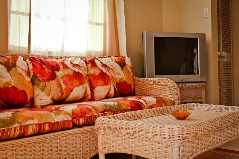 The elegantly designed living room.