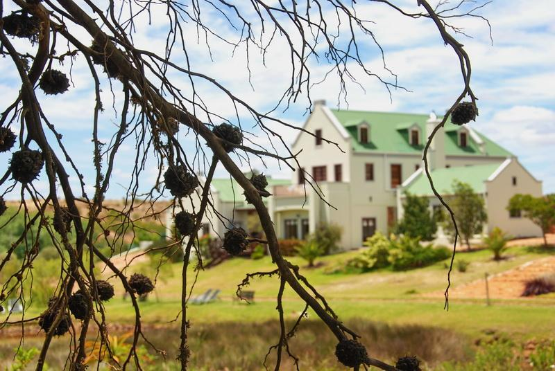 Peace Valley Guesthouse - Napier - Western Cape - 4 * TGCSA accreditato B & B alloggio