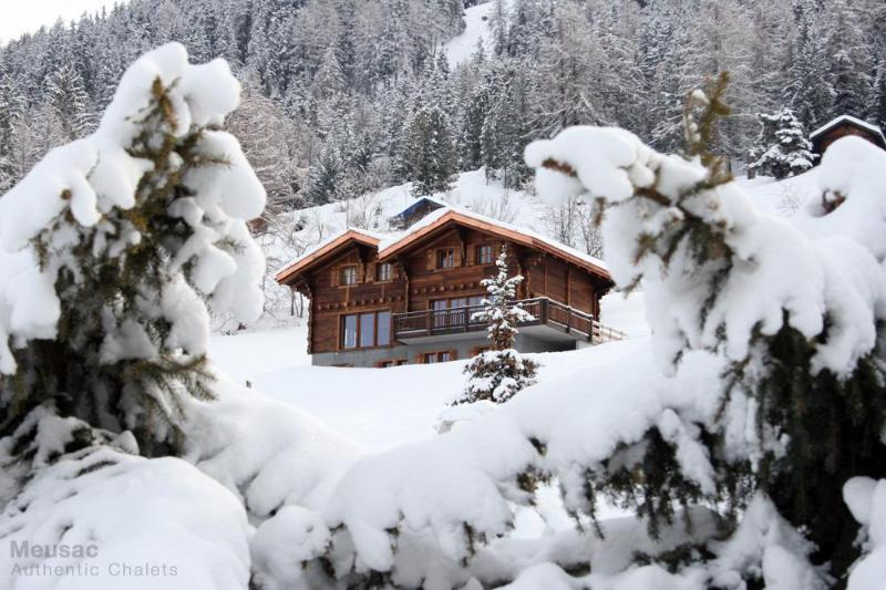 Chalet Altitude 1600 Ski-in-out, Hammam, Spa, Piano, BBQ, location de vacances à Valais