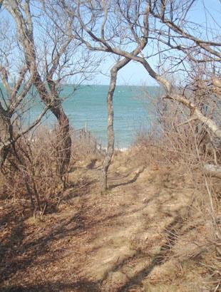 Short path to private beach access