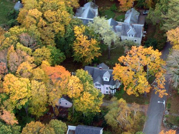 Aerial view in the autumn