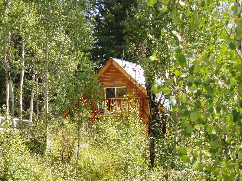 Aspen Chalet - Surrounded by Aspen Trees and Woods, holiday rental in Pagosa Springs