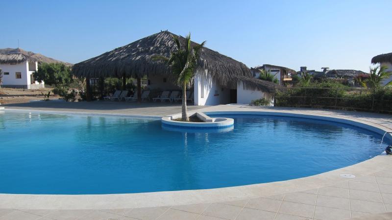 Pool of the condominium