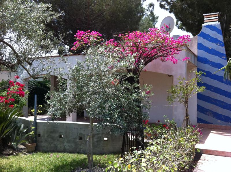 Casa Max Front filled with olive trees, jasmine and wisteria