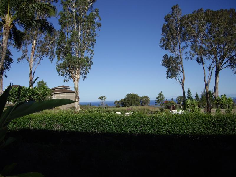 Pool, Golf course, Ocean