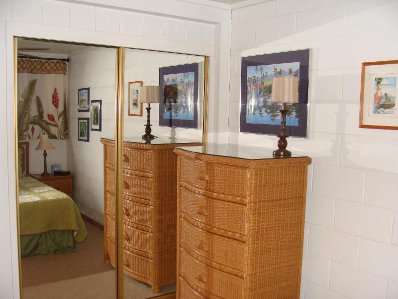 5 Drawer Bureau anad Mirrored Closet Doors in Both Bedrooms