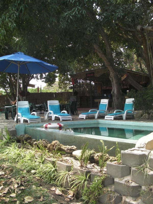 Pool at the Bar