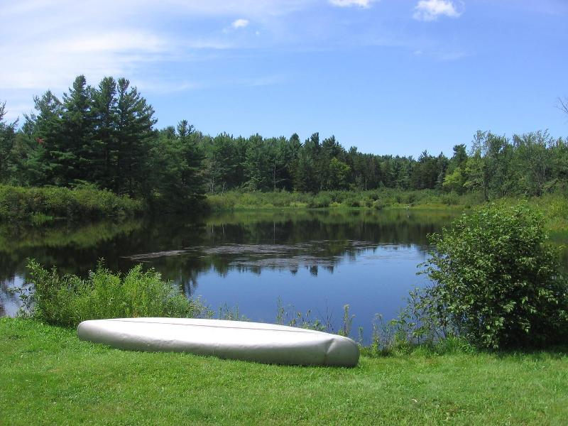 Pond in summer with canoe