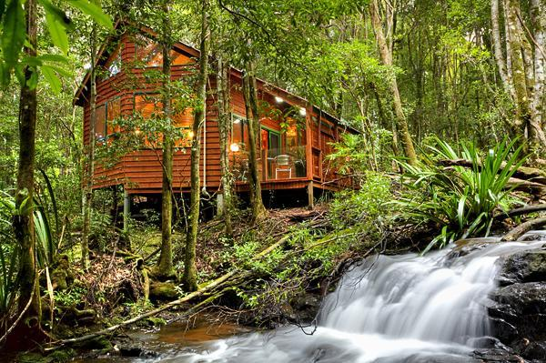 The Mouses House Rainforest Retreat, holiday rental in Gold Coast