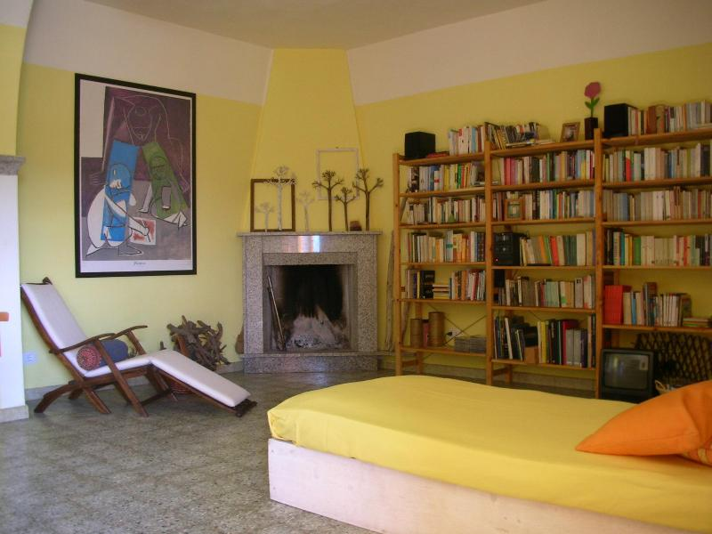 livingroom with open fire place and library