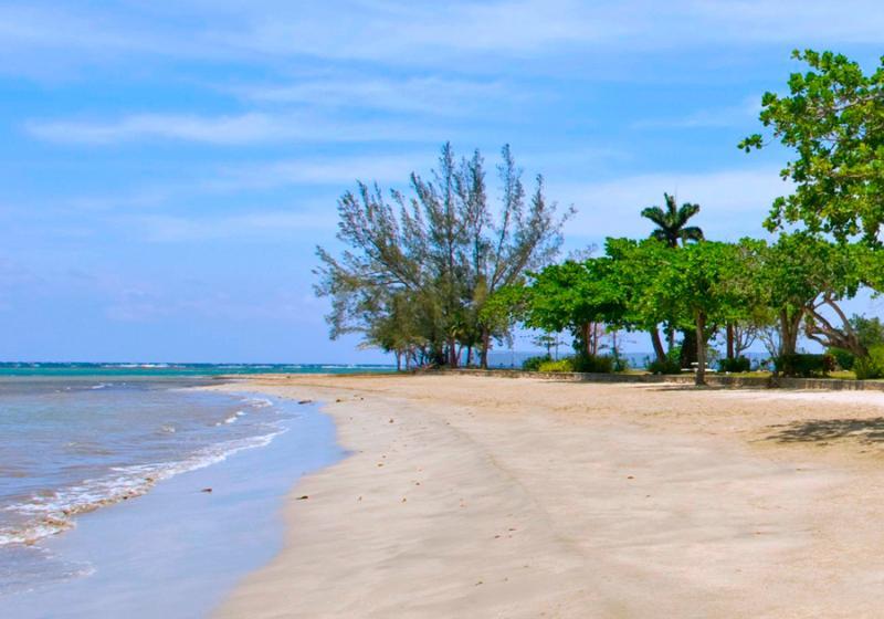 100 yardas del mar es de Holden, una continuación de la barrera arrecifal compleja que frentes de gran parte de la costa norte de Jamaica. Este arrecife vivo es hogar de una gran variedad de coloridos peces tropicales y corales.