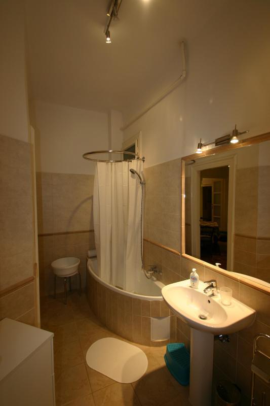 Bathroom into dining room (via mirror)