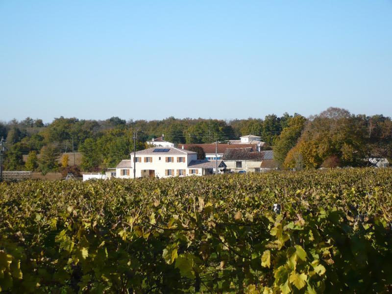 Maison Vignes, vakantiewoning in Puyrenier