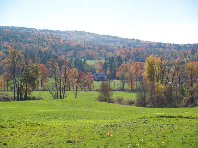Der Blick von der Schaukelstühle von unseren Sunnyside Bauernhaus-Veranda.