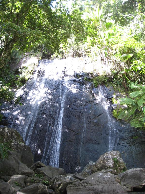 The beautiful El Junque Rain Forest is only a couple of miles away.