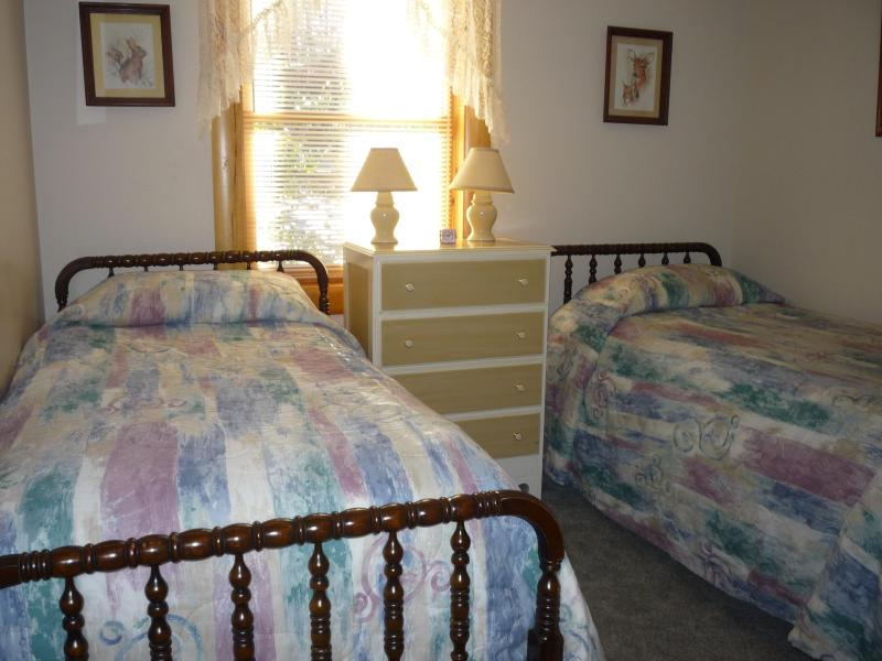 Downstairs Twin Bedroom