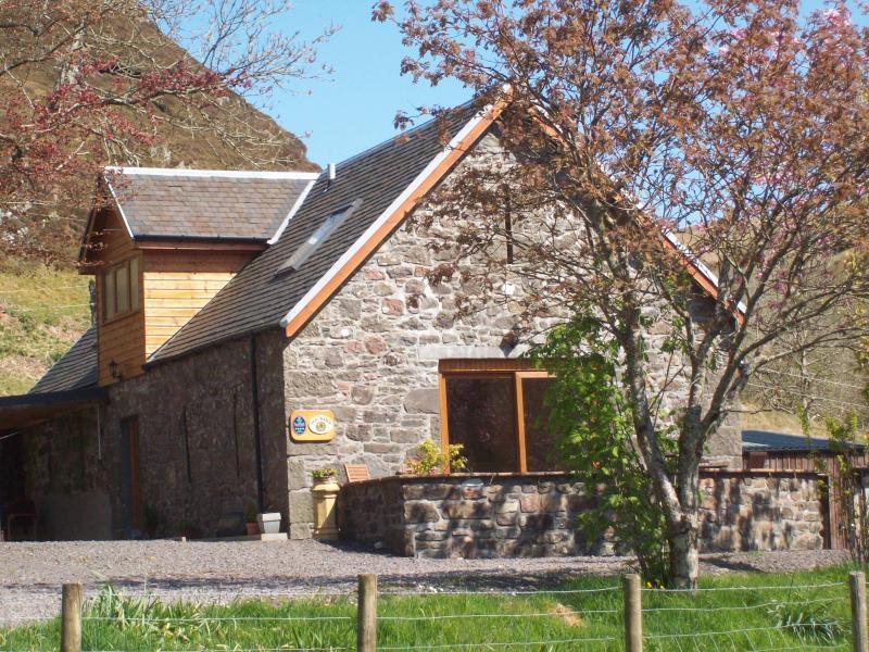 The Barn in Spring
