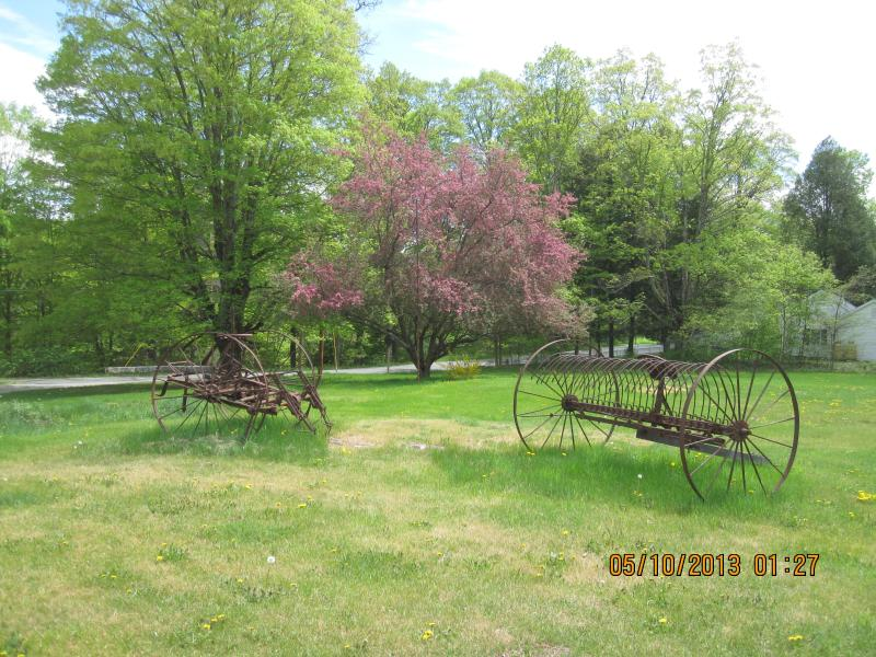 The side yard with the old haying machine.