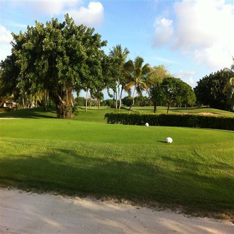 Cocotal Golf