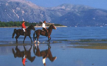 Horsering