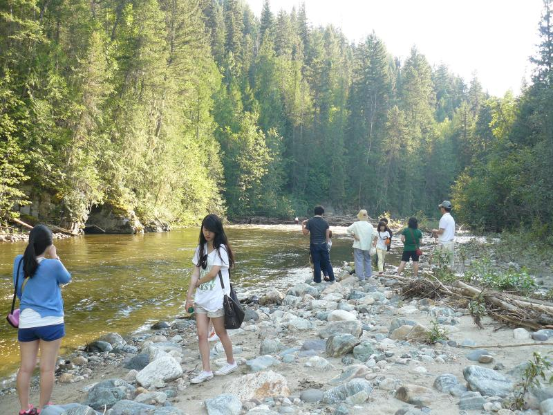 refreshing fun at the creek