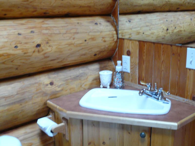 bathroom sink in Creekside cabin