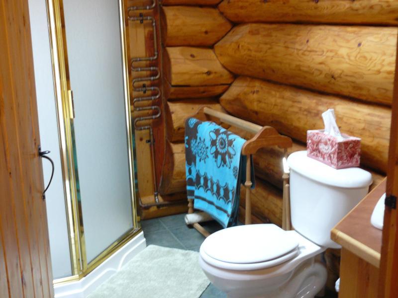 bathroom including walk in shower