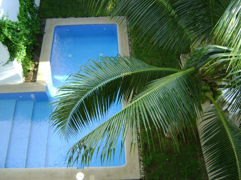 Center binnenplaats met zoet water zwembad