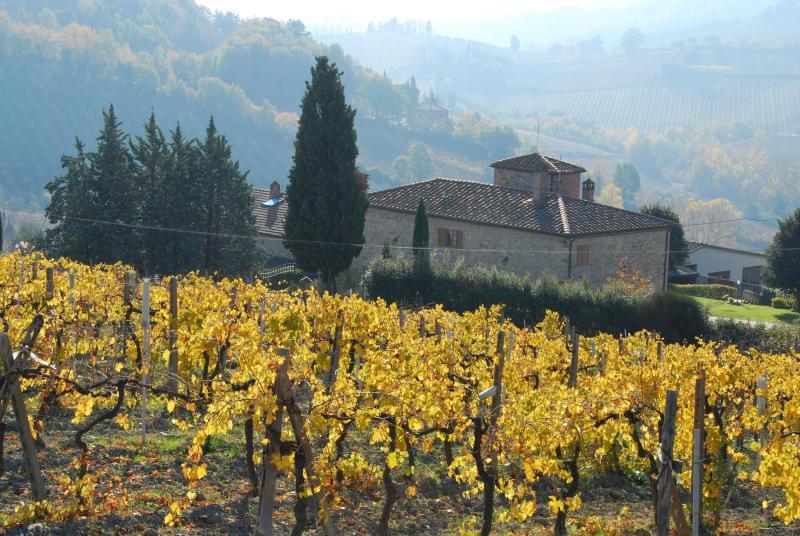 Autumn colours near San Gimignano