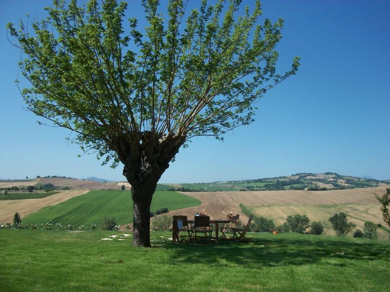 ITALIAN MARCHE HILLS, location de vacances à Fratte Rosa