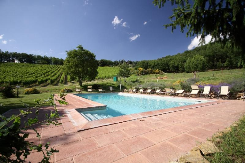 Podere Vignola farmhouse near Florence - Giardino, vacation rental in Florence