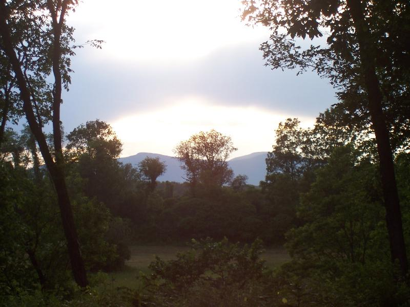 Best Summer View From Property to the Mountains