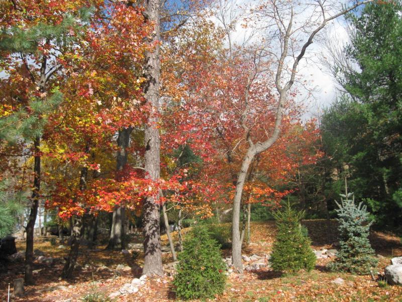 automne belle escapade