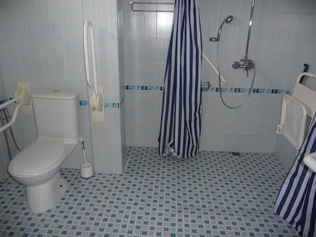 Master bathroom, en suite, roll in shower