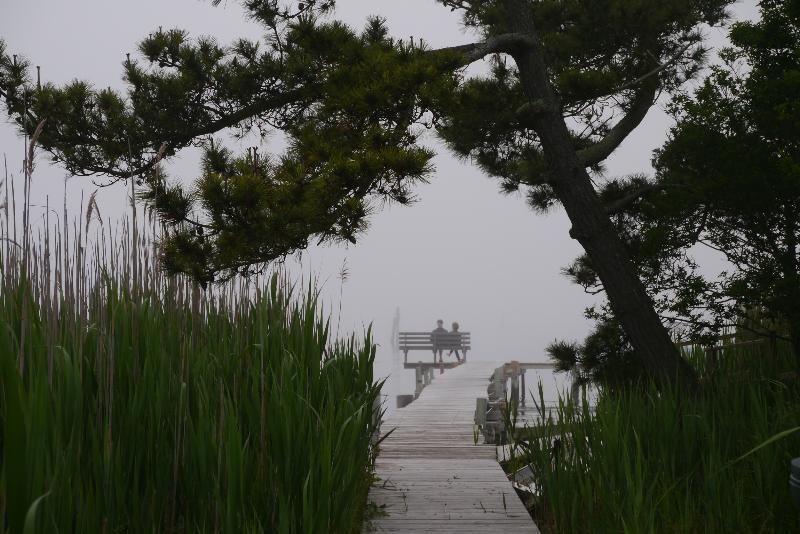 View of the dock at the end of our walk on The Great South Bay.