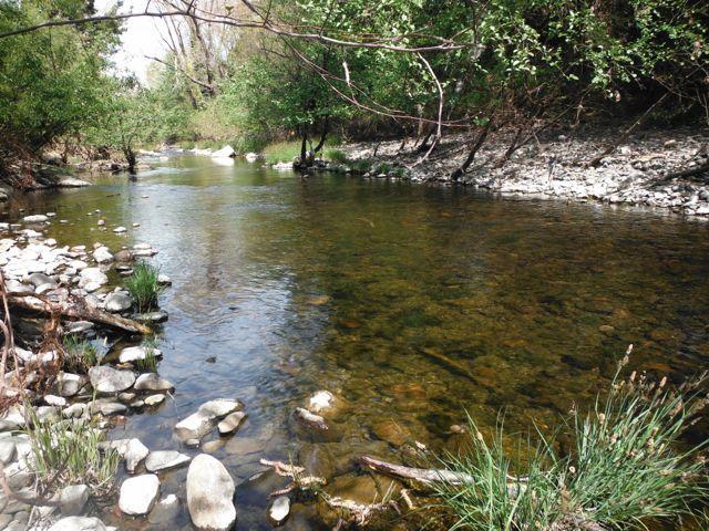 Sonoma Creek