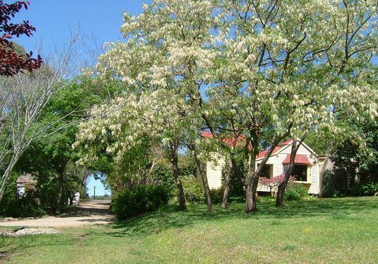 Garden & Hermitage Cottage
