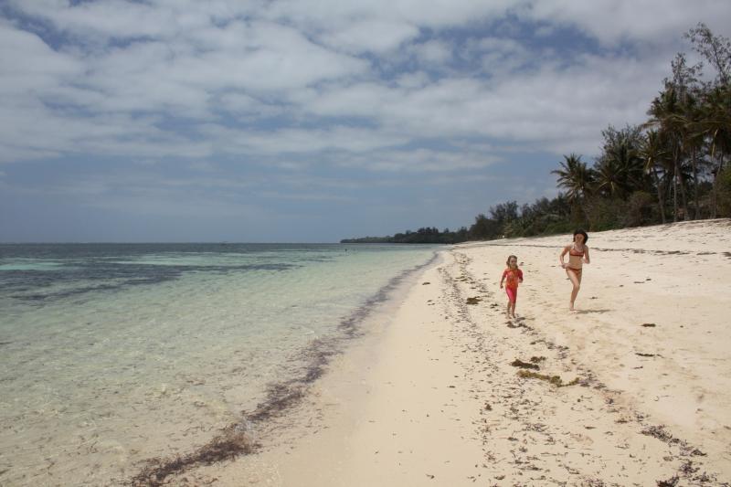 Solita scena spiaggia affollata