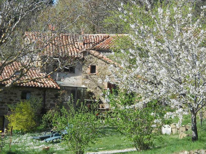 Lucashouse, Tuscany, Fontepetra apartment, location de vacances à Seggiano
