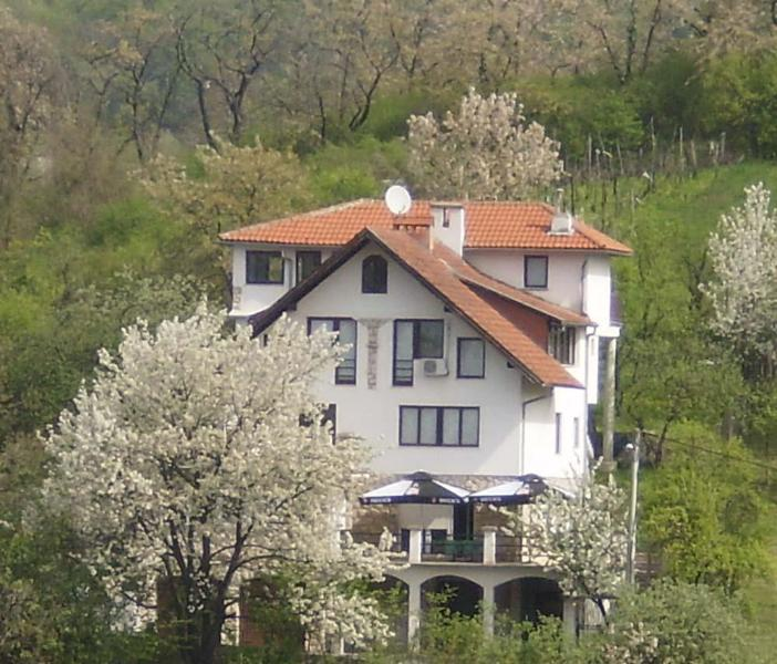 Villa Lorena, vacation rental in Zagreb