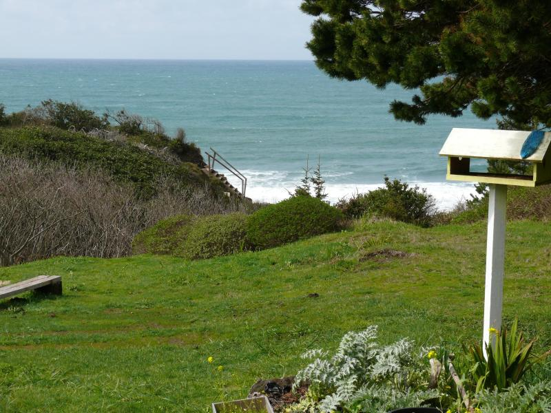 backyard has two decks that look directly out to the ocean.  Sunsets, picnics, whales and pelicans.