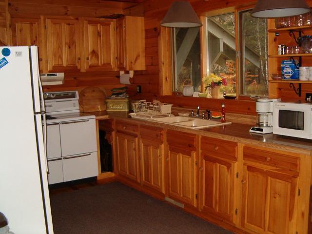 Modern electric kitchen