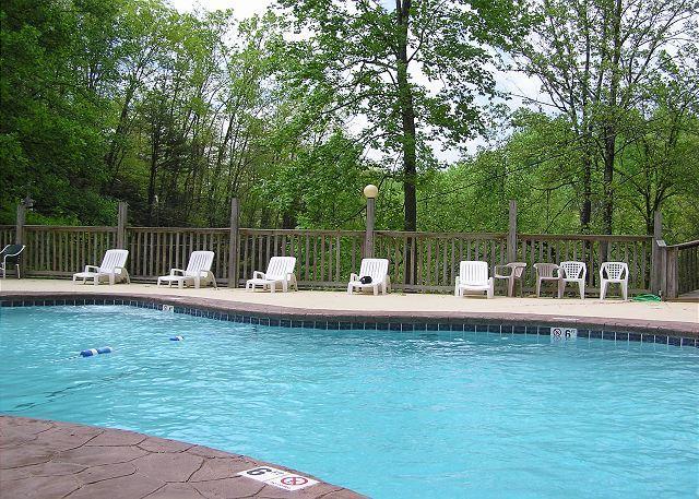 Love & Laughs #11- Resort Pool