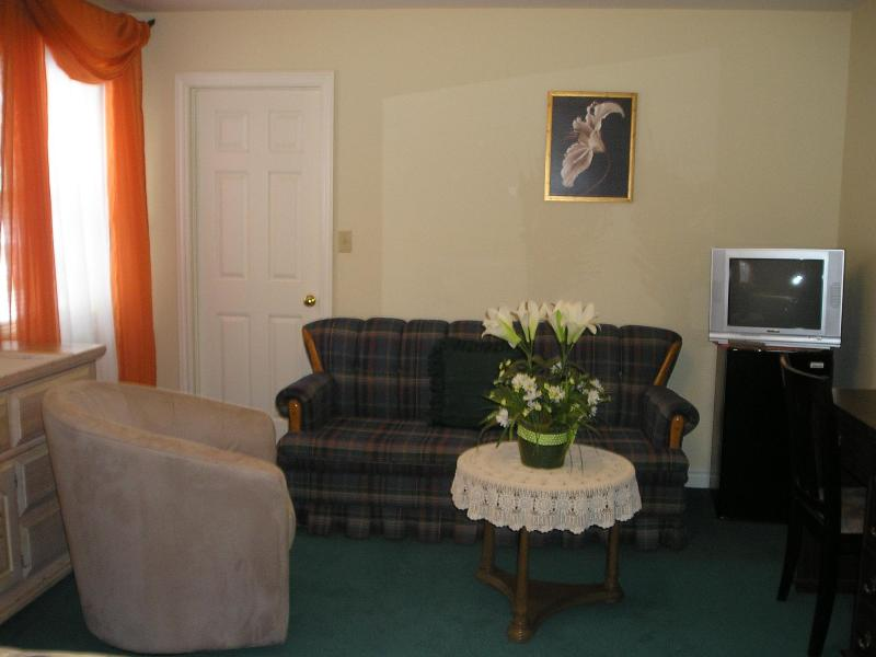 PINE SUITE at SUSAN´S VILLA -get 2 rooms pay1 - B&B/Hotel Niagara Falls, Canada, vacation rental in Youngstown