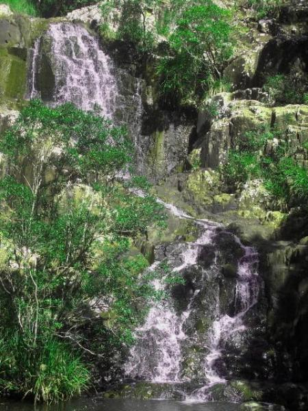 private waterfall in the garden for guests