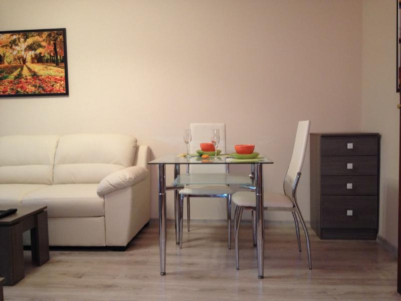 Stunning apartment by the sea, holiday rental in Sarafovo