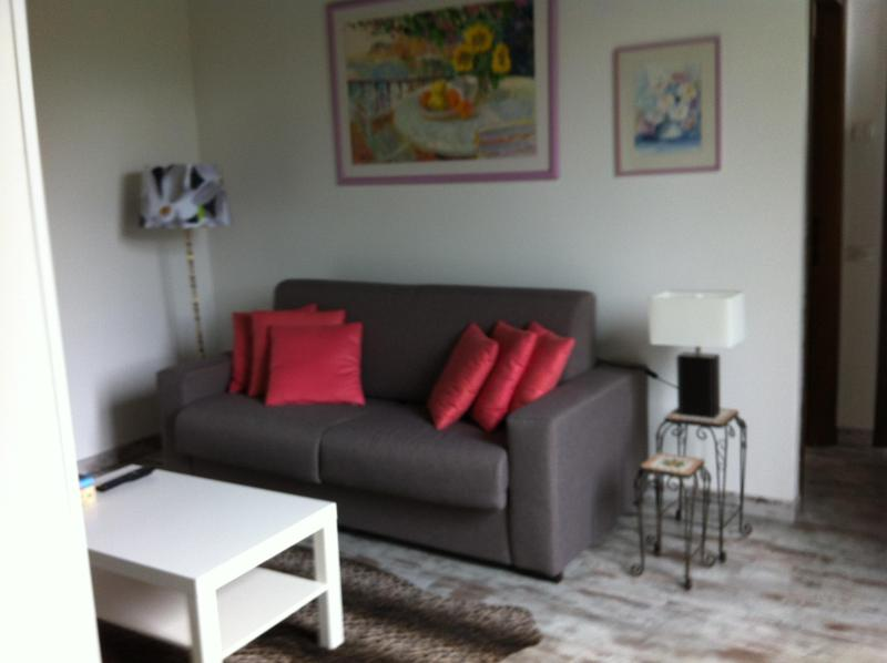 Living room and sofa bed