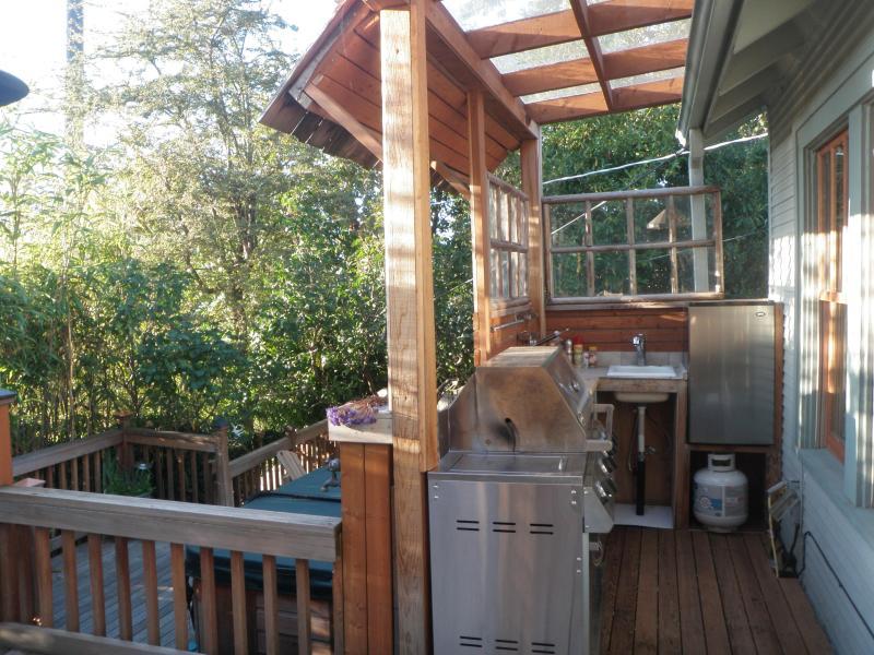 Cucina coverd con propano per barbecue, piccolo frigorifero e lavello