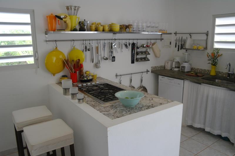 Fully equipped kitchen; gas top, micro wave/ convection oven, fridge/freezer w. ice maker, blender.